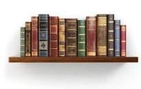 bookshelf Cropped.jpg