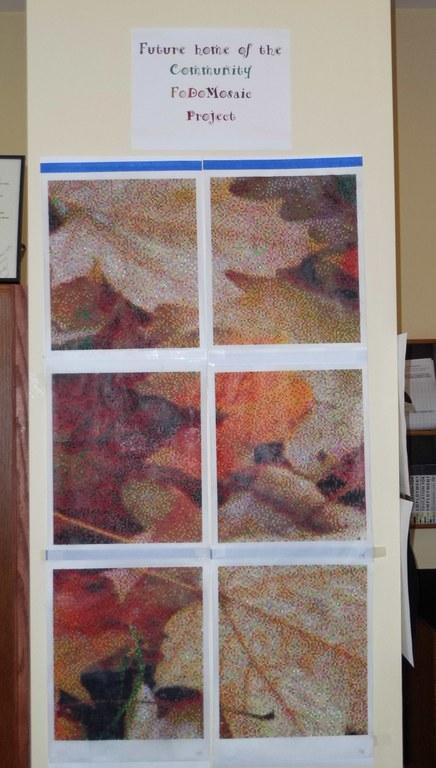 Fodomo progress 6 panels.JPG